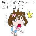 The profile image of kamishima0423