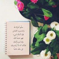 @Book__94
