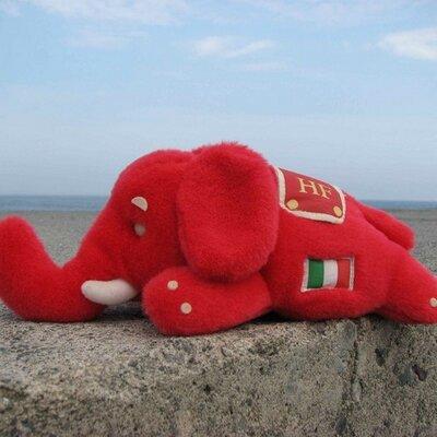 紅の象(アカ停止中) | Social Profile