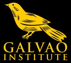 Galvão Birds Social Profile
