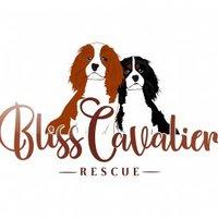 @RescueBliss