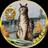 The profile image of ga_straight