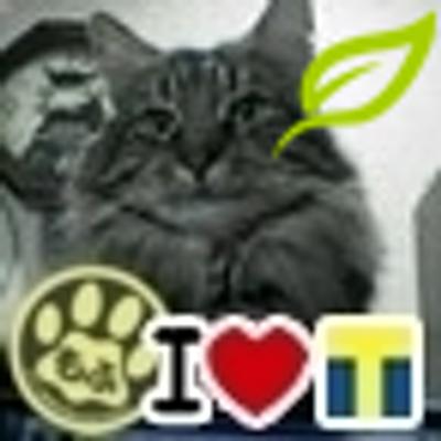 瑠奈 | Social Profile