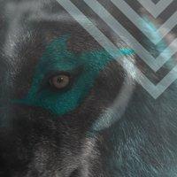 @kosmo_spacedog