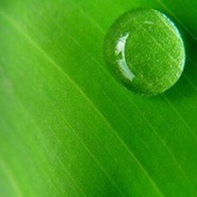 초록그림 | Social Profile