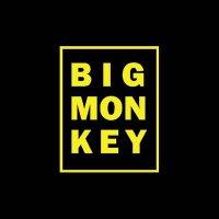 @BigmonkeyM