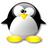 Penguingro  normal