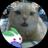 The profile image of ayayuzu2201