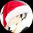 The profile image of koekoe_natume18