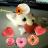 The profile image of chonakoro