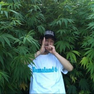 ハッパトニオ  WEED MUZIK Social Profile