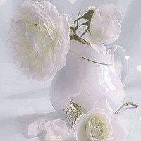 @rose_toyor
