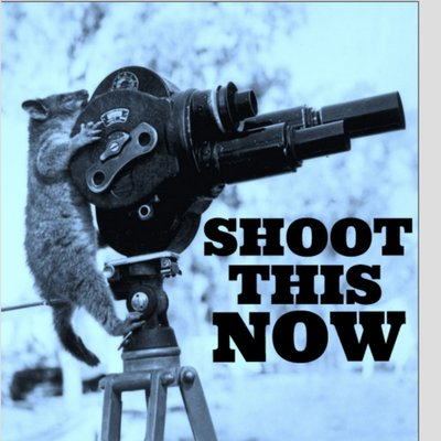 Shoot This Now