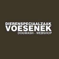 DSZVoesenek