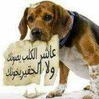 @abuuday2019