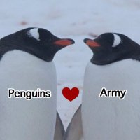 @Penguins_Army