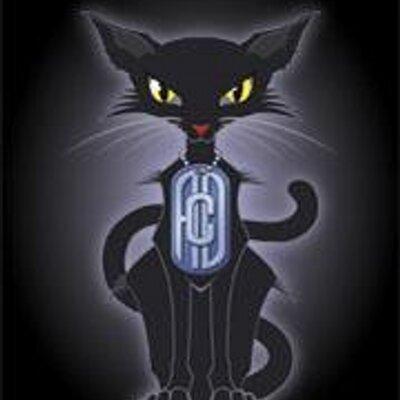Alley Cat Digital | Social Profile