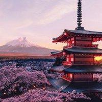 AestheticsJapan