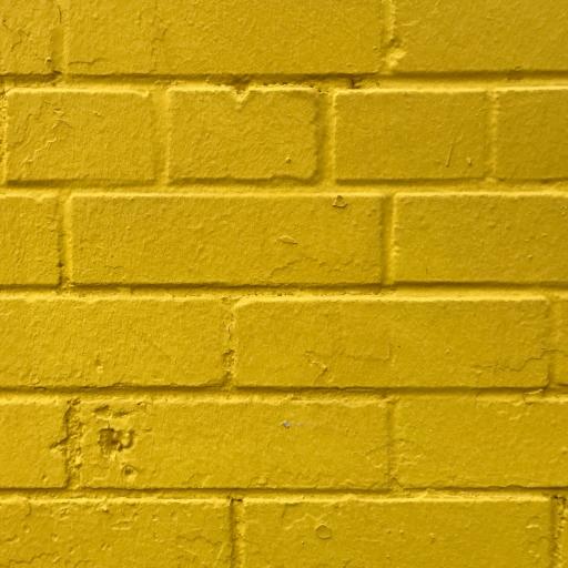 Sarı Duvar  Twitter Hesabı Profil Fotoğrafı