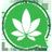 CannabisNews420