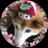 The profile image of momooni800