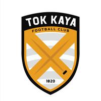 @TokKayaFC