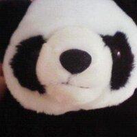 yas(ぢゅん)jun | Social Profile
