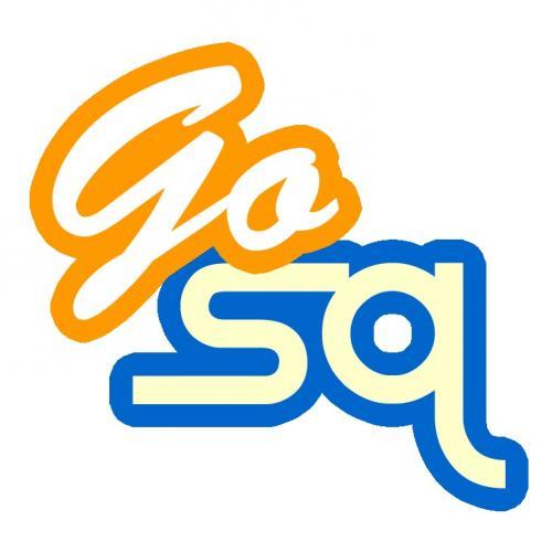 GoSquare