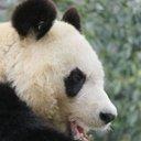 🐼王子動物園図鑑🐨