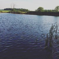 @lake_carpenter