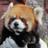 The profile image of kubokei55