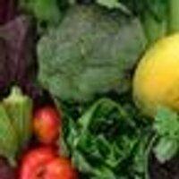 hnlfarmersmarket | Social Profile