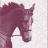 @EquusSphere