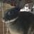 The profile image of kazu22002