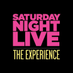 SNL: The Experience's Twitter Profile Picture