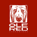 Ole Red Tishomingo's Twitter Profile Picture