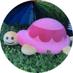 カメちゃん🐢's Twitter Profile Picture