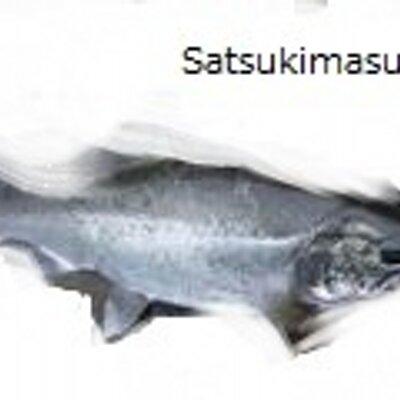 satsukimasu | Social Profile