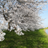 The profile image of kota_12345678