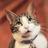 The profile image of cohnaneq