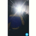 AlexandraAlbines's Twitter Profile Picture