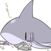 @Shark___k