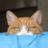 The profile image of syubi_tai