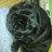 @DOG_KURO_PAG