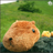 The profile image of tomo80kaw
