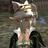 The profile image of nurehameln