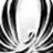 midori_wing