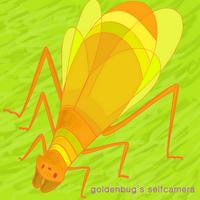 goldenbug | Social Profile