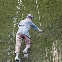 waterdutchman
