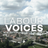Labour Voices